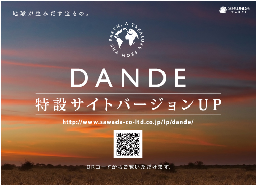 DANDE_version_up